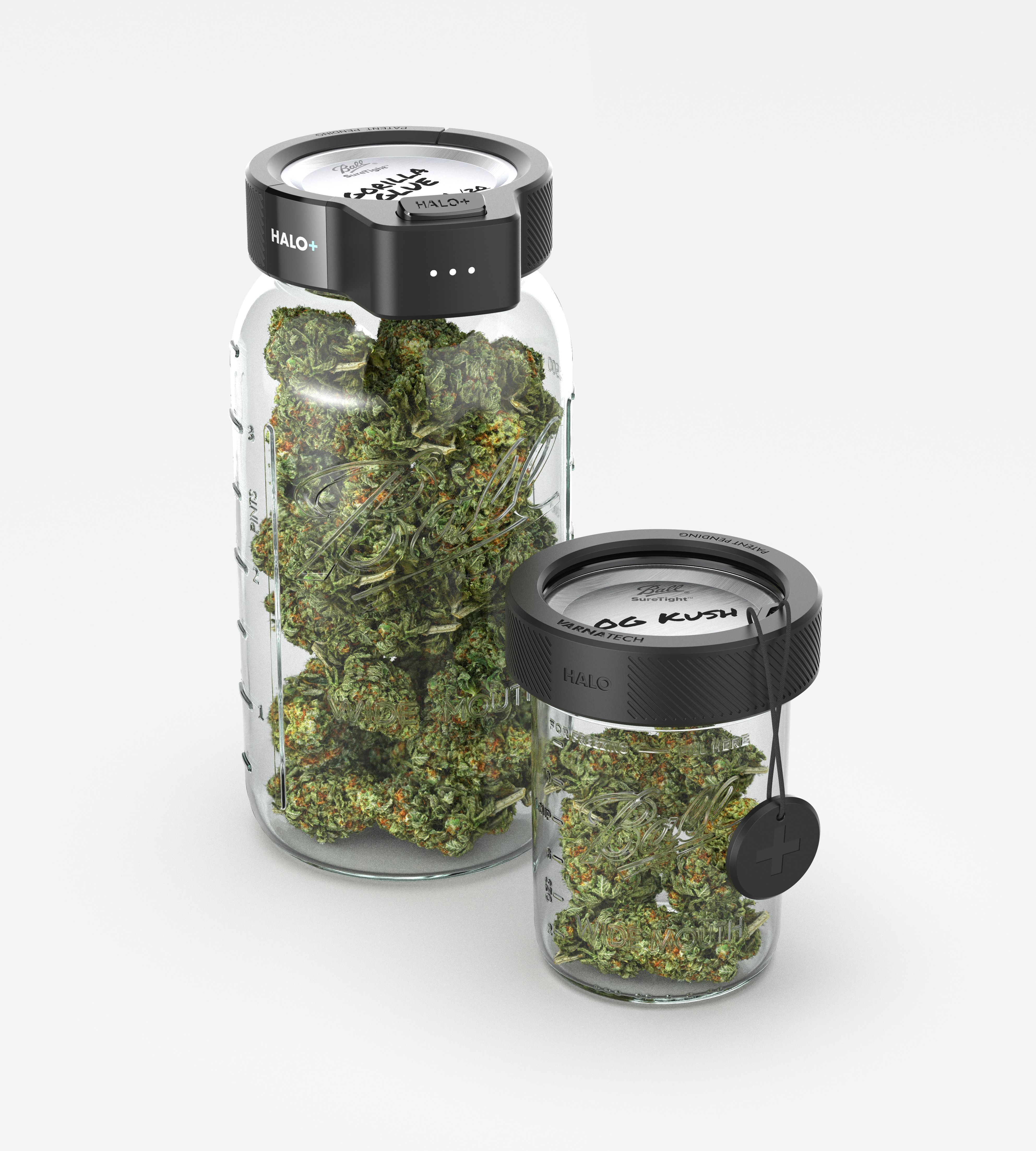 3D CAD Render by Sprout Studios of Varna Tech Halo with +Tag and Halo+ with marijuana