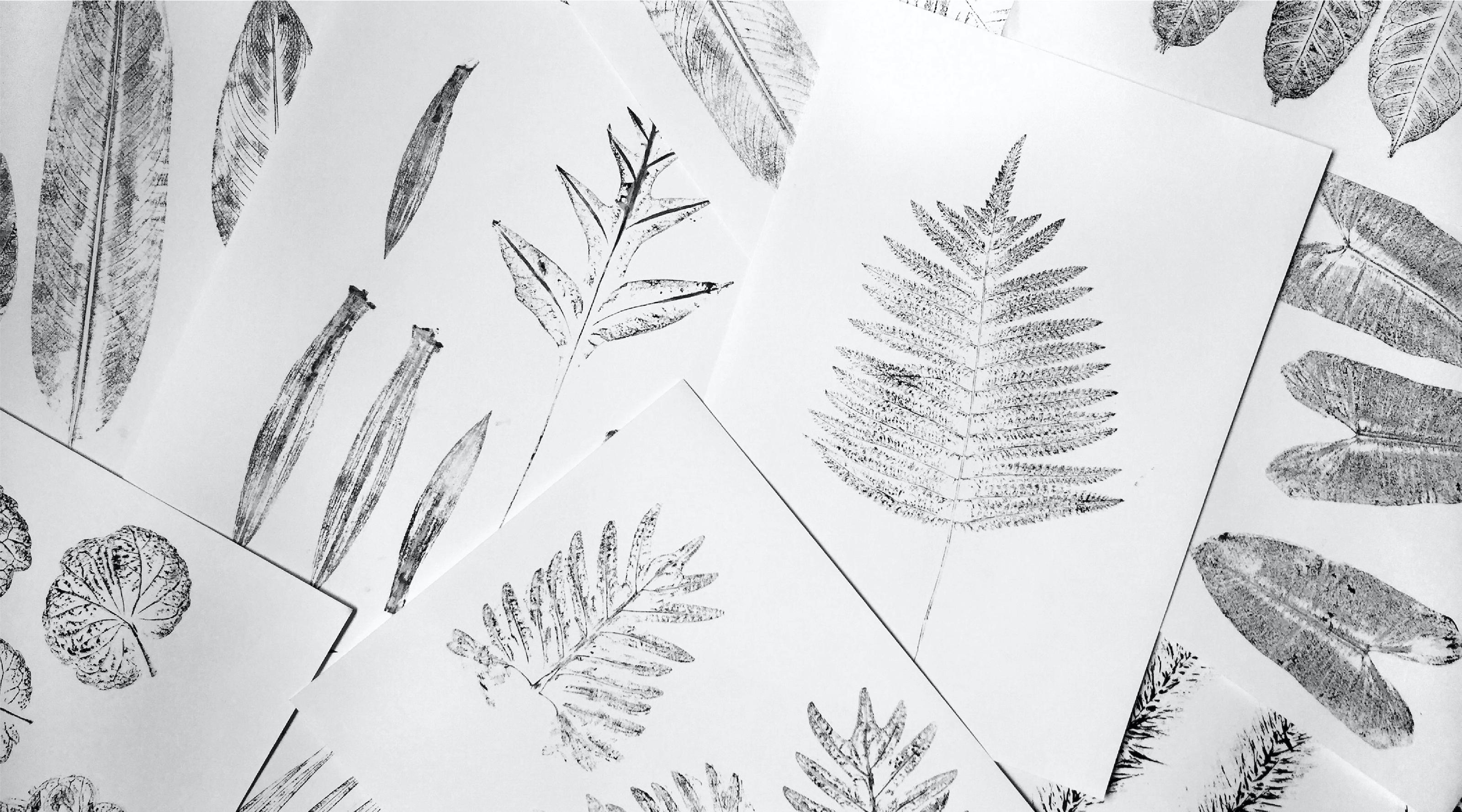 Graphics Element | The Thavorn | Rebranding | Simplisis | Branding | Phuket | Creative | Design