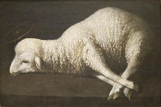 Agneau blanc pattes liées couché auréole Franscisco de Zurbarán