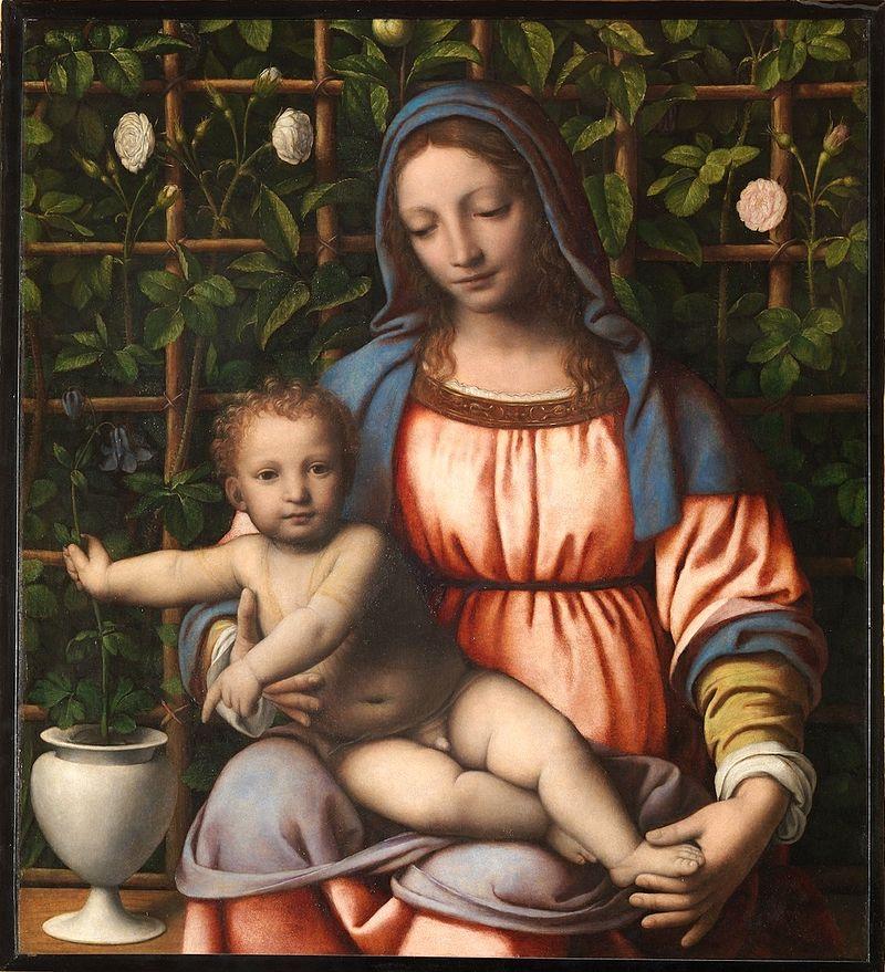 vierge enfant nu roseraie feuilles rose tunique bleue rouge Bernardino Luini