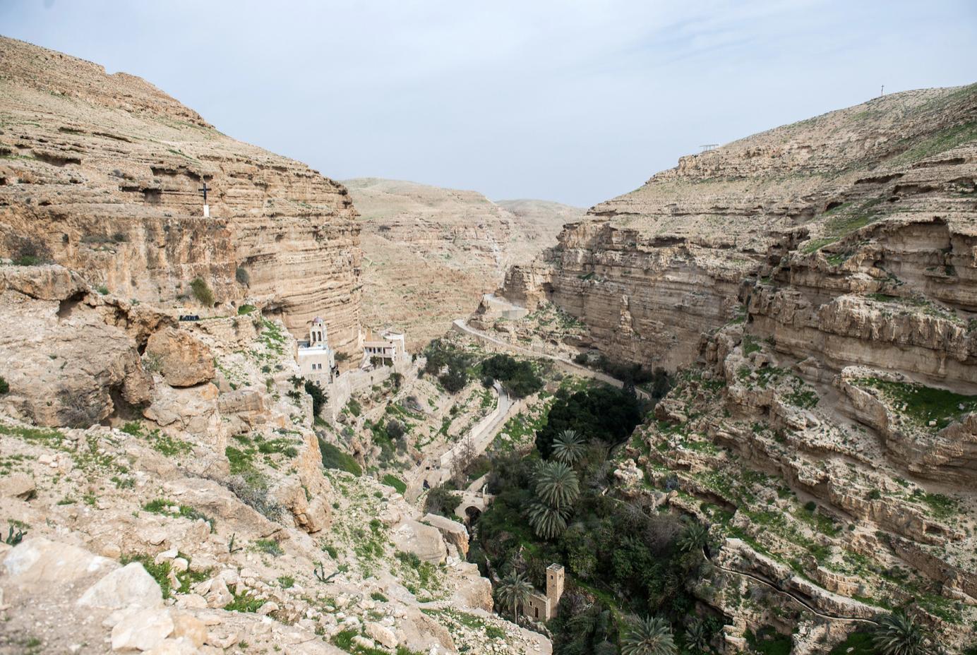 roche verdure Wadi Kelt Jéricho Palestine