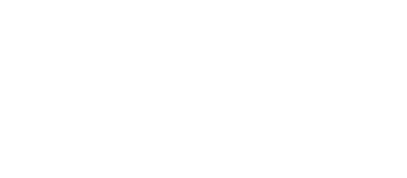 Logo of one of our last mile carriers, DPD
