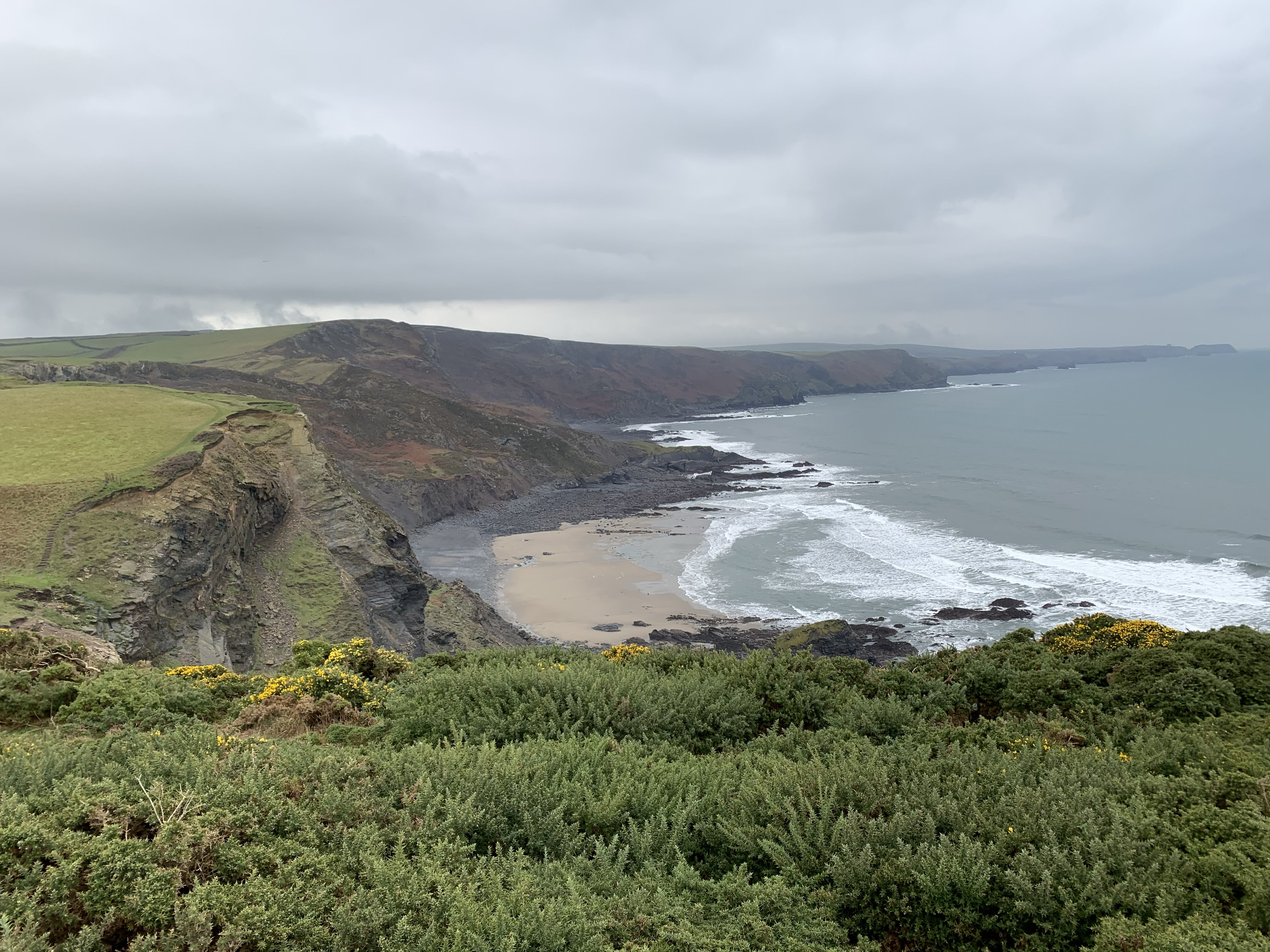 Walking The South West Coast Path from Crackington Haven to Boscastle while staying at Gwelmor in Widemouth Bay
