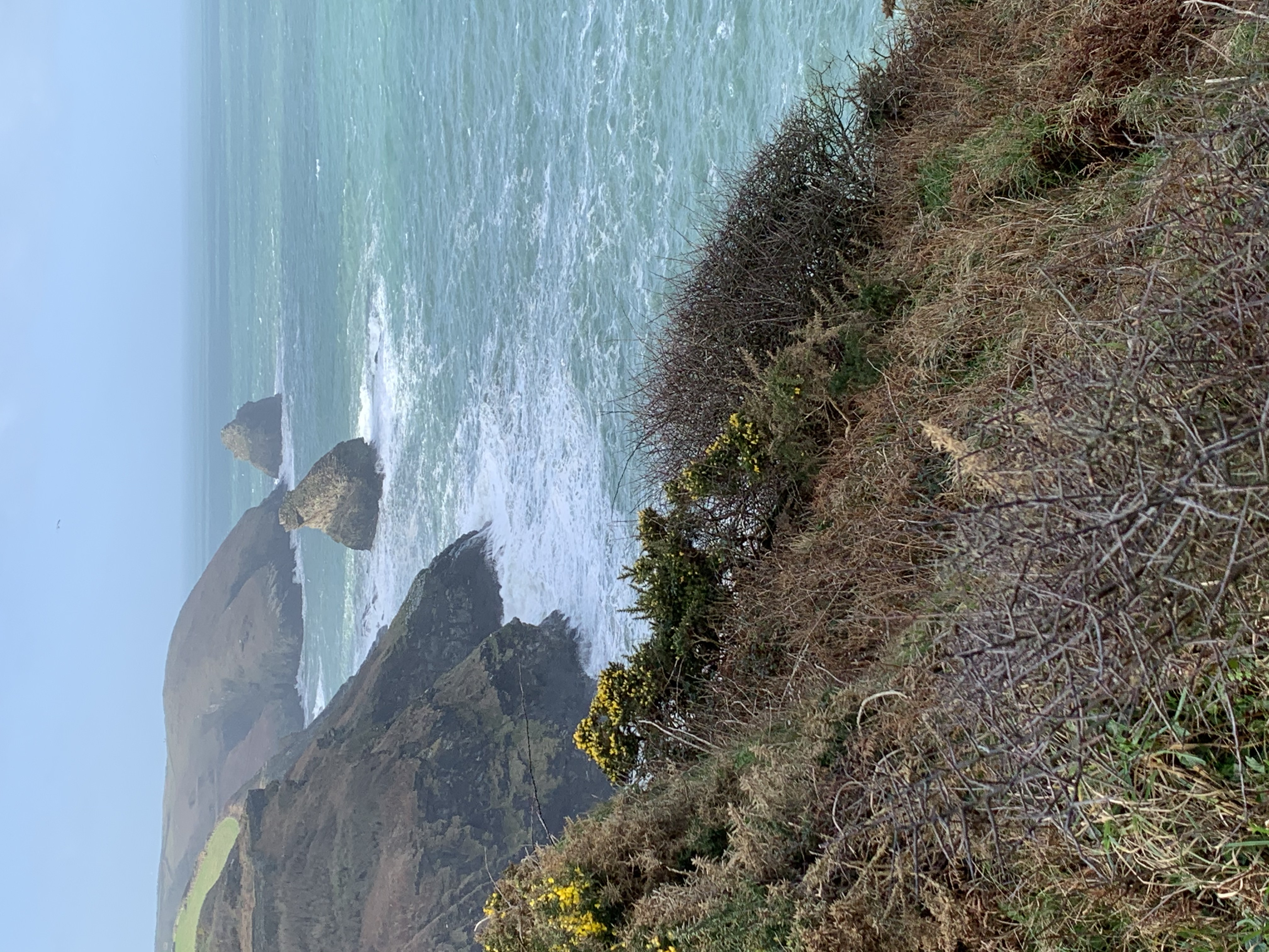 Dramatic rocks on The South West Coast Path walk from Boscastle to Tintagel