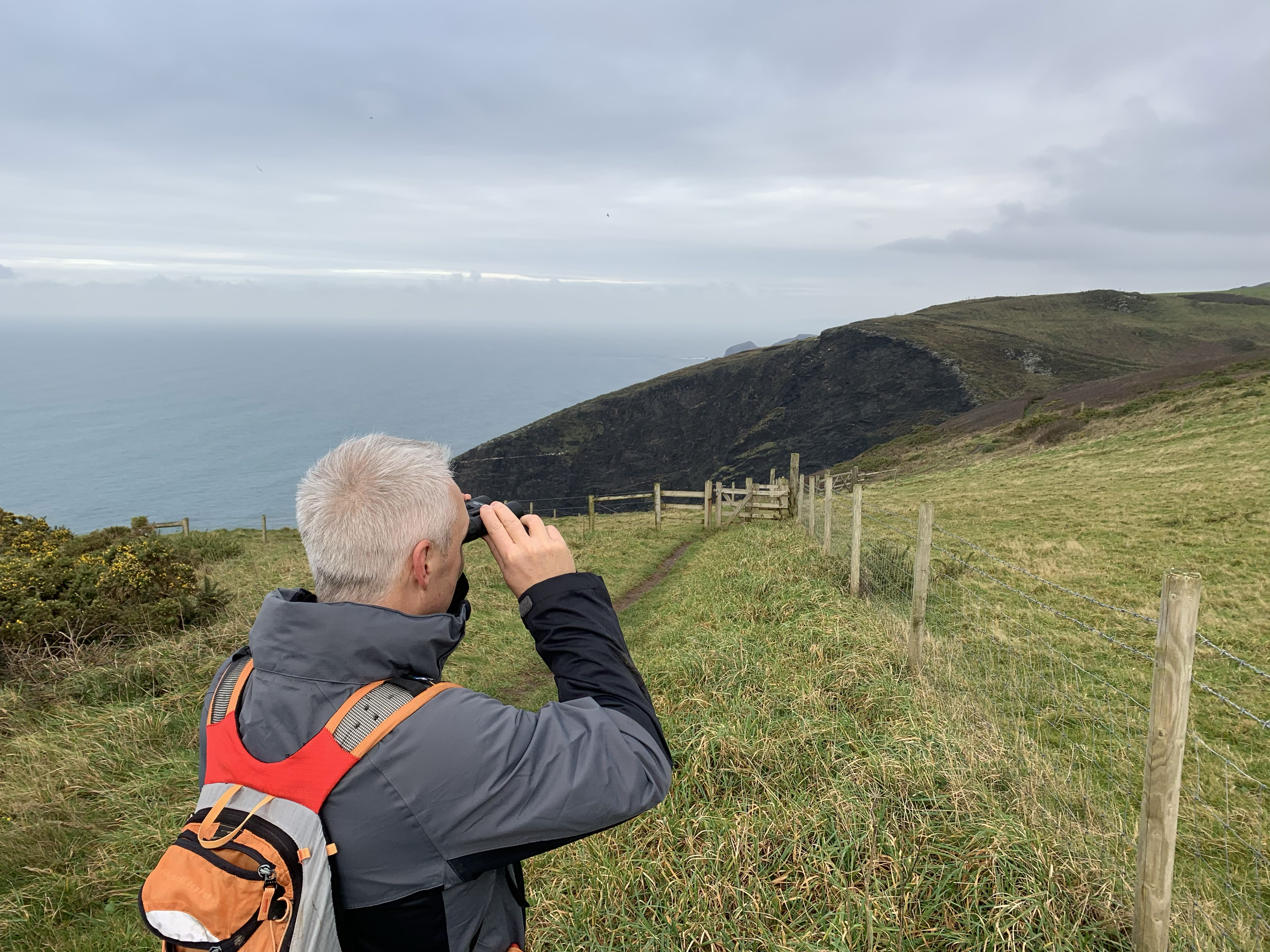 The South West Coast Path walk from Crackington Haven to Boscastle
