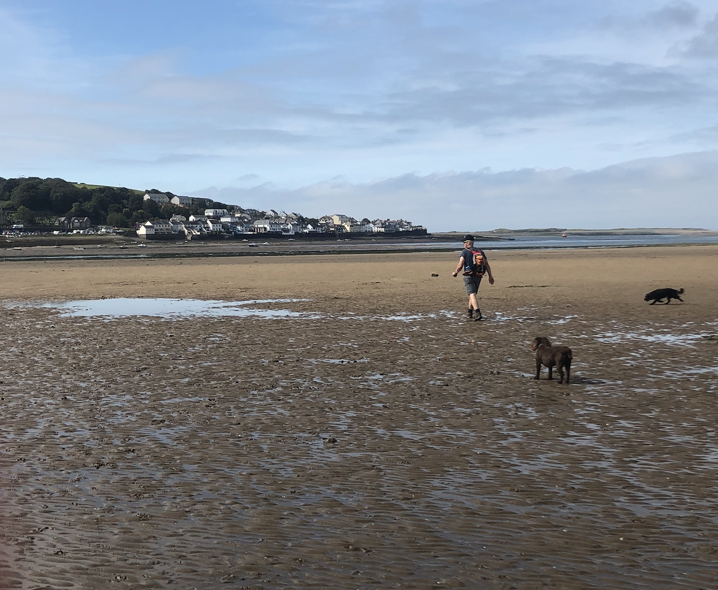 Walking the South West Coast Path from Barnstaple to Appledore and trying to cross the River Taw at low tide.