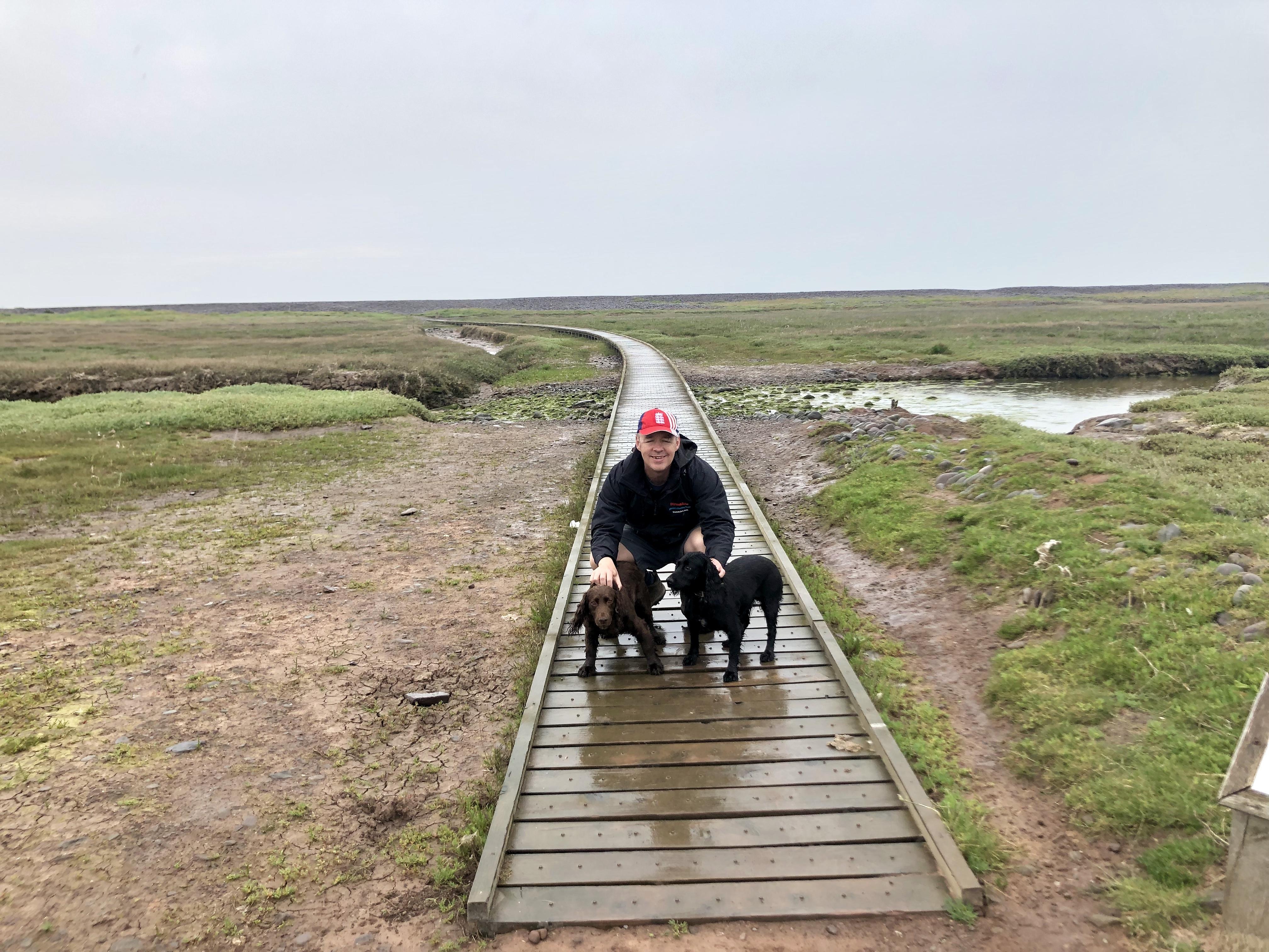 Wooden platforms run across the marshes near Porlock Weir