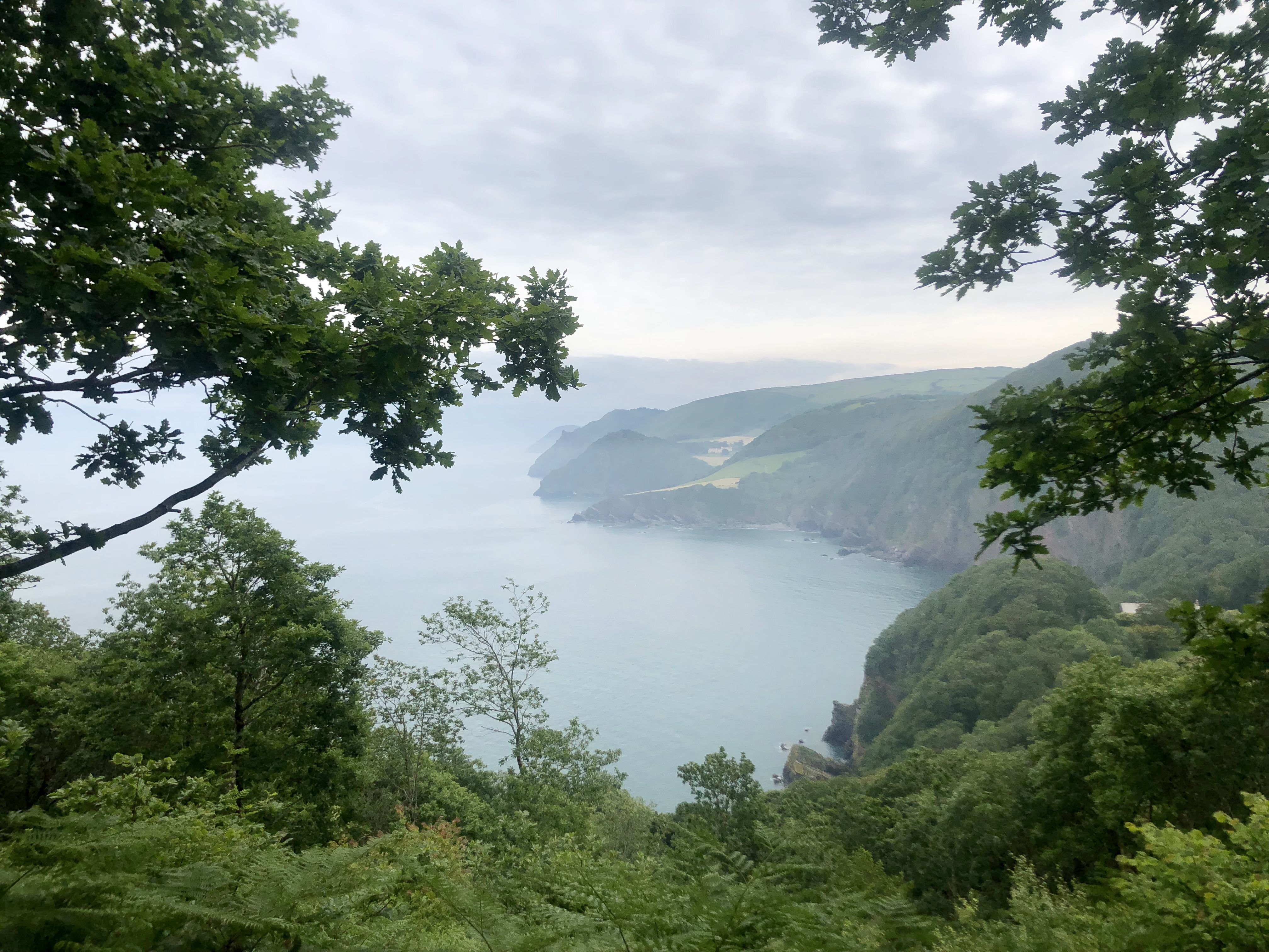 Looking through the trees back along the coastline on the walk from Lynton to Heddon's Mouth just before Woody Bay