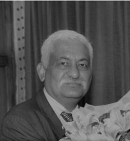 Mr. Nilay D Kapoor