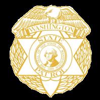 WSP logo