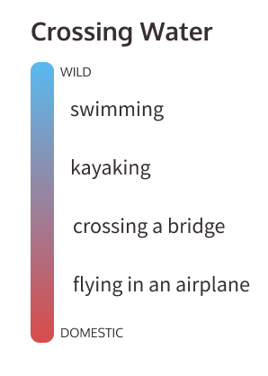 crossing water interaction pattern example