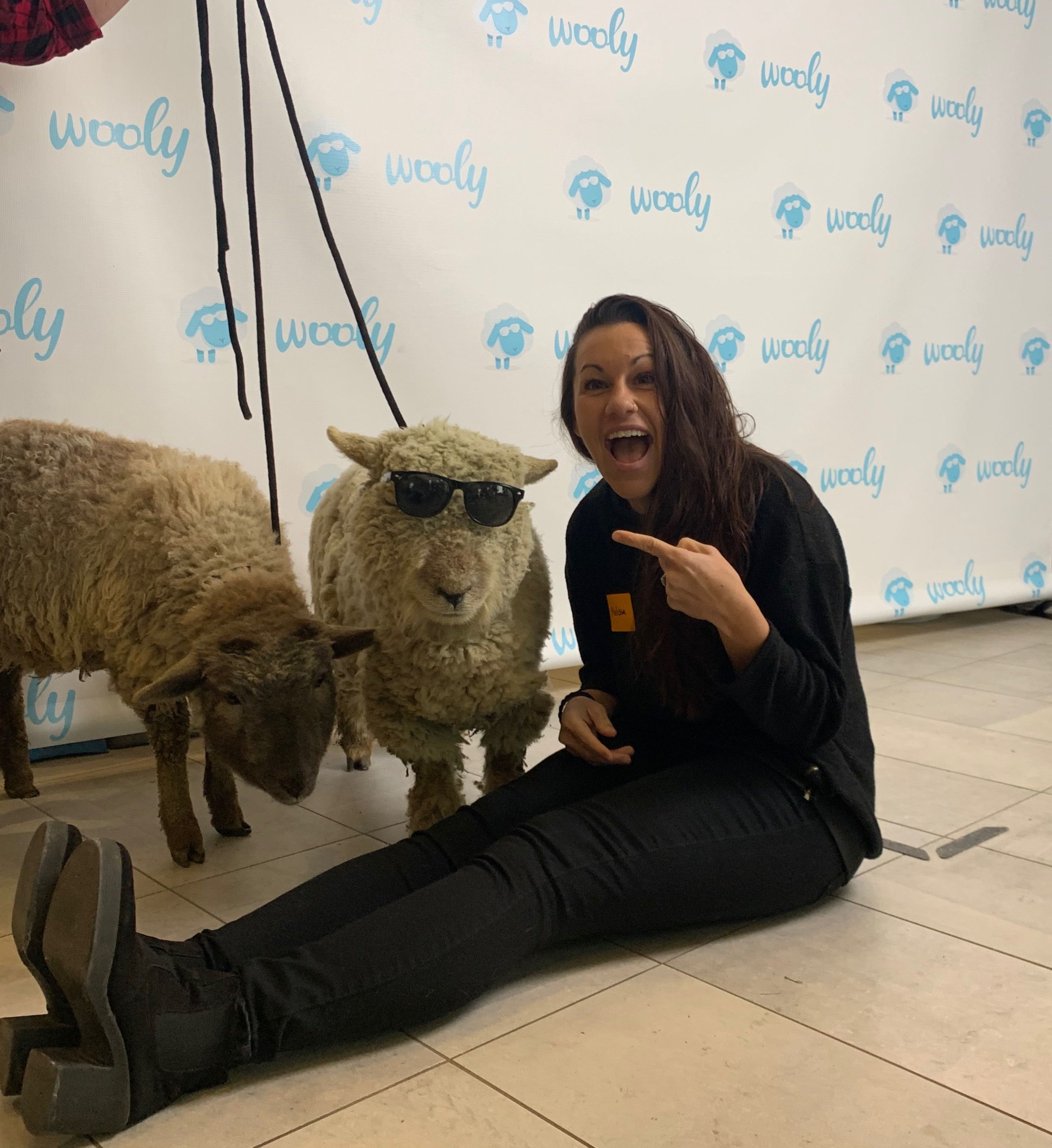 The sheep were a hit at the Wooly luncheon