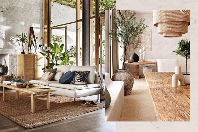 Interior Design Trend: Biophilia & Sustainability