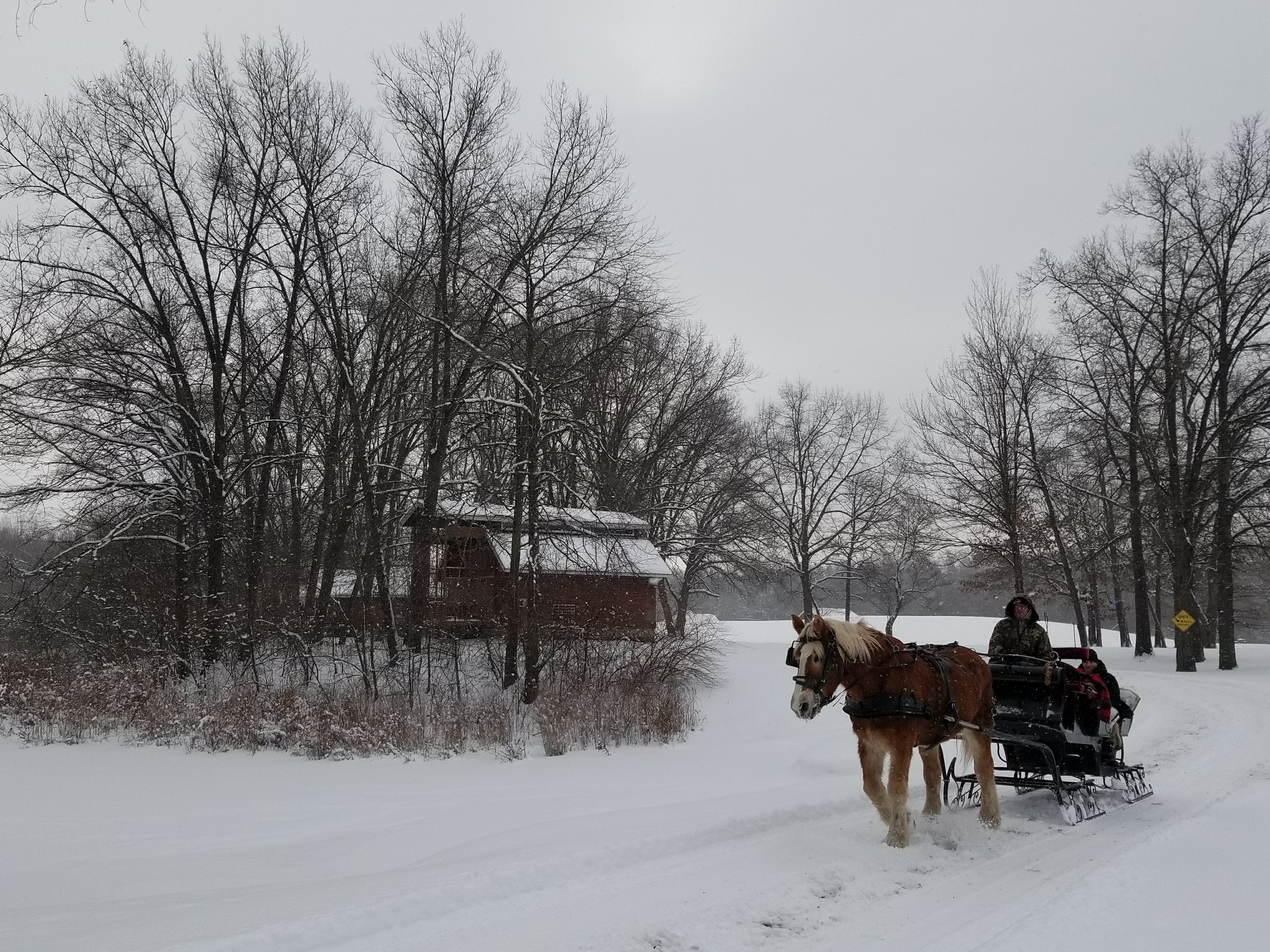 A horse drawn carriage going through the snow.