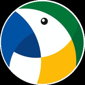 Braza Soccer Logo
