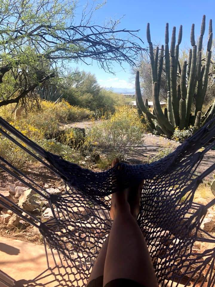 a Crysalis Hammock chair in cactus country