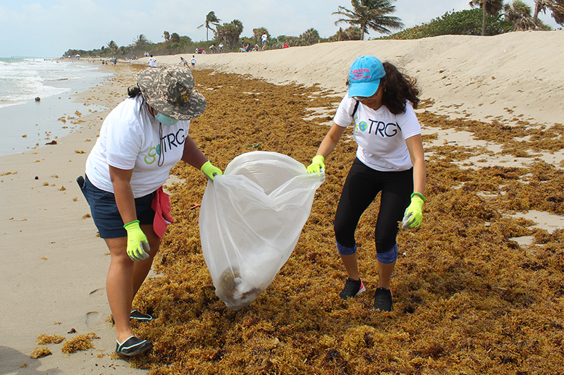 goTRG team members cleaning up Miami Beach