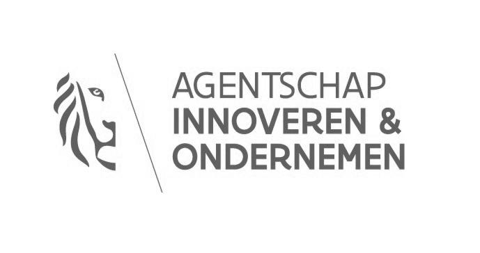 Agentschap innoveren & ondernemen logo (Ester partner)