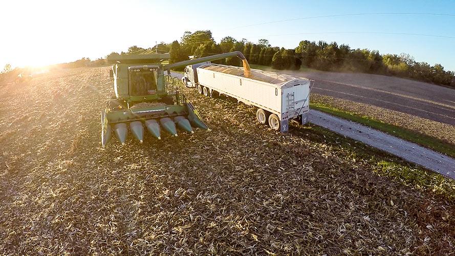 Drone photo of farm harvesting into a hauler semi-truck.