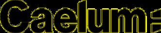 Logo da empresa Caelum