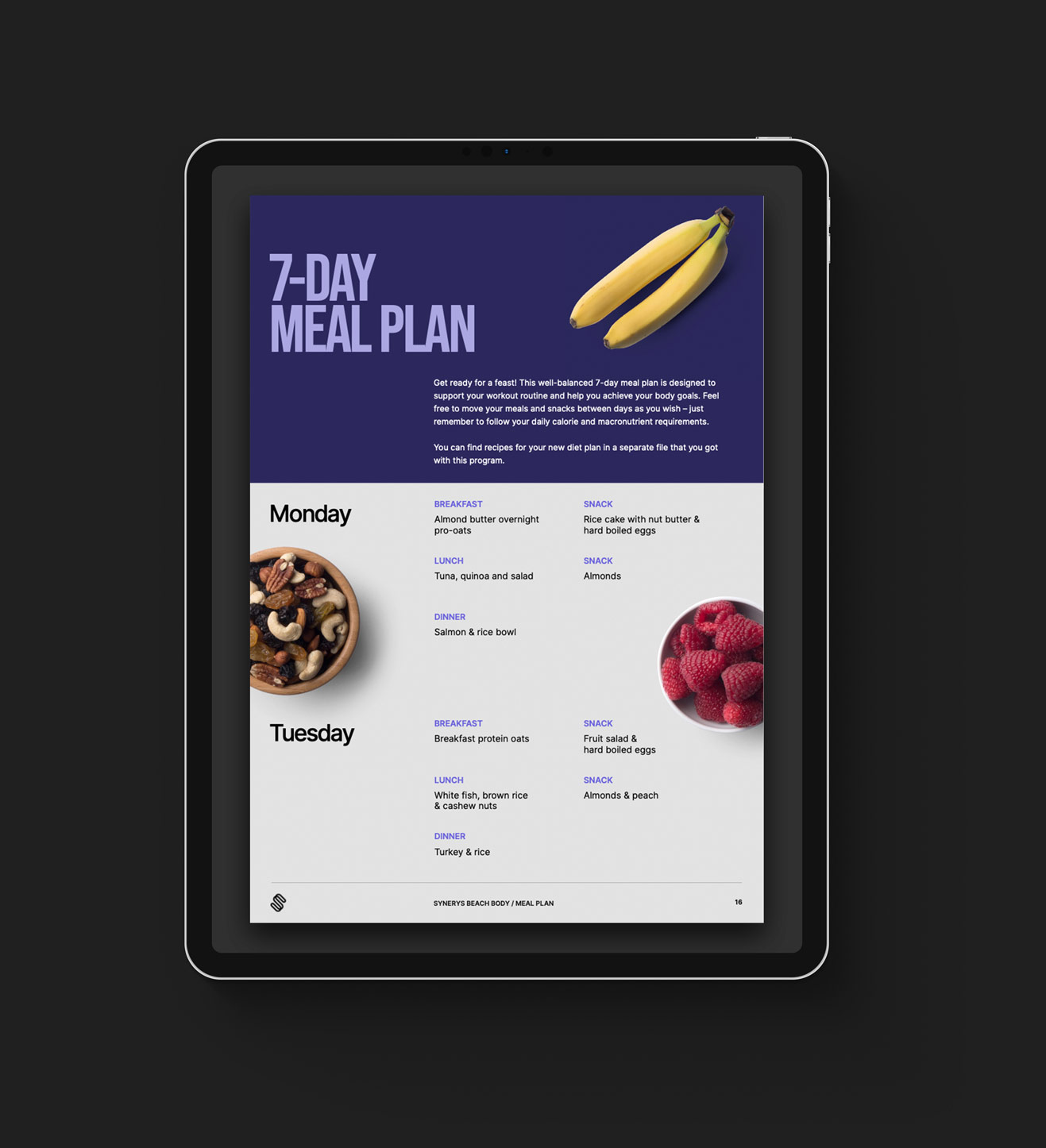 iPad with opened fitness program in PDF format