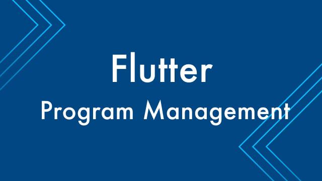 Building a Flutter Program Management Team