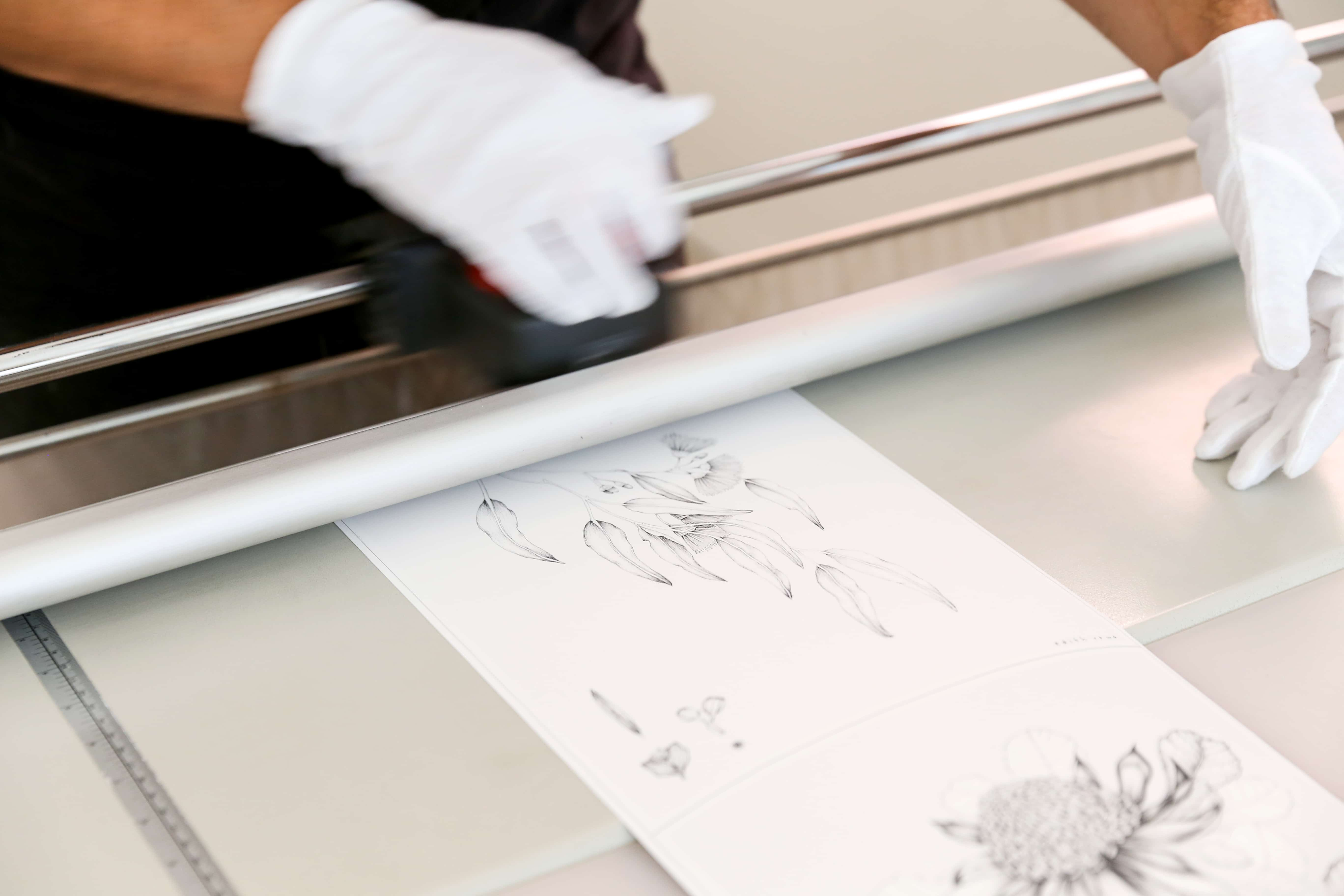 Cutting Print with White Gloves