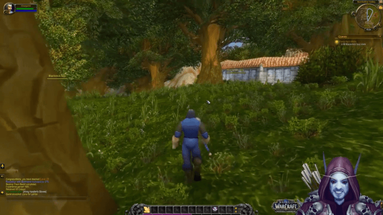 A screenshot of a scene from the World of Warcraft game featuring a player in a wooded area