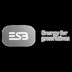ESB (WHITE)