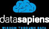 Datasapiens Logo