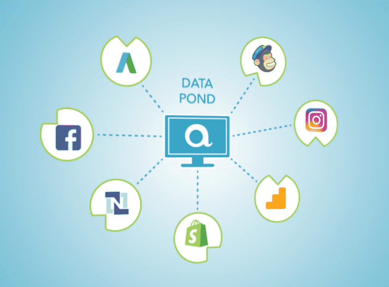 What our clients are saying about Pond