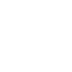 This is the white Everfit logo.