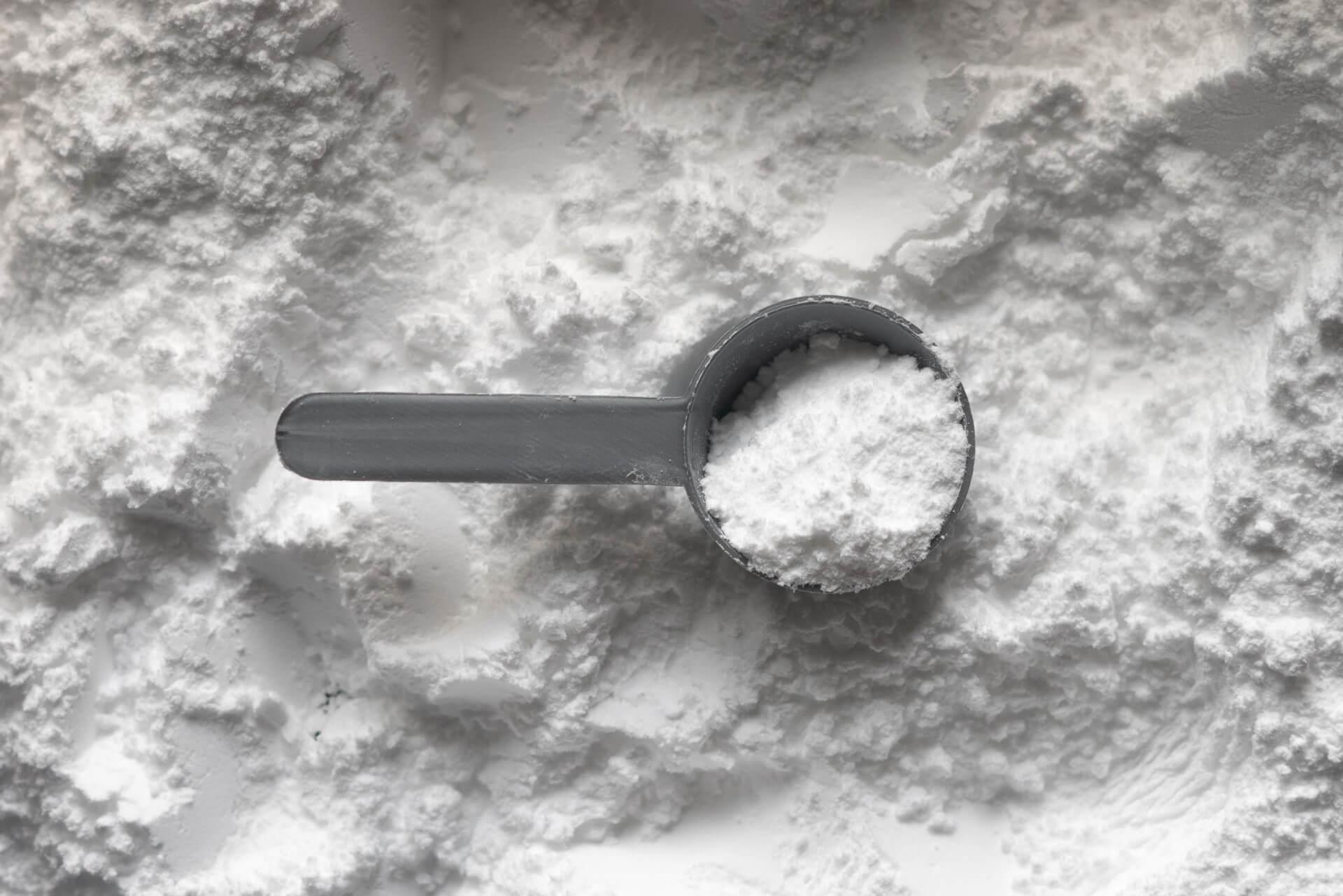 Creatine monohydrate in powder form