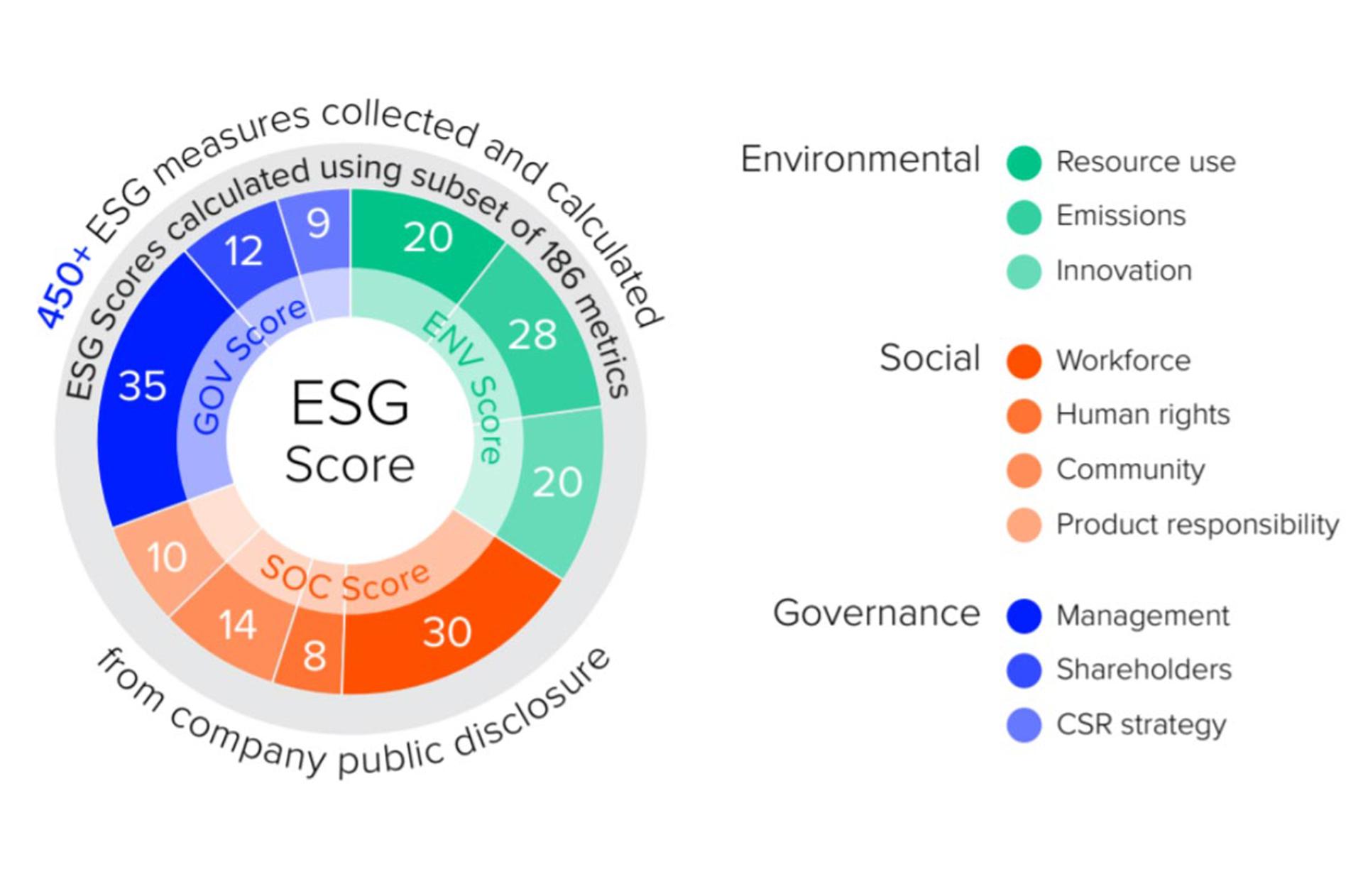 What is an ESG Score