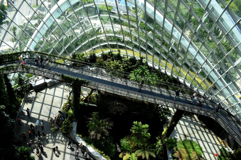 glass building with plants