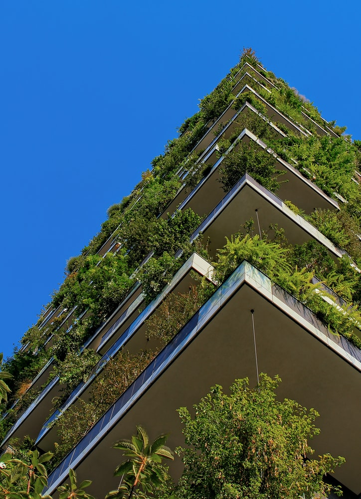 building with plants hanging over