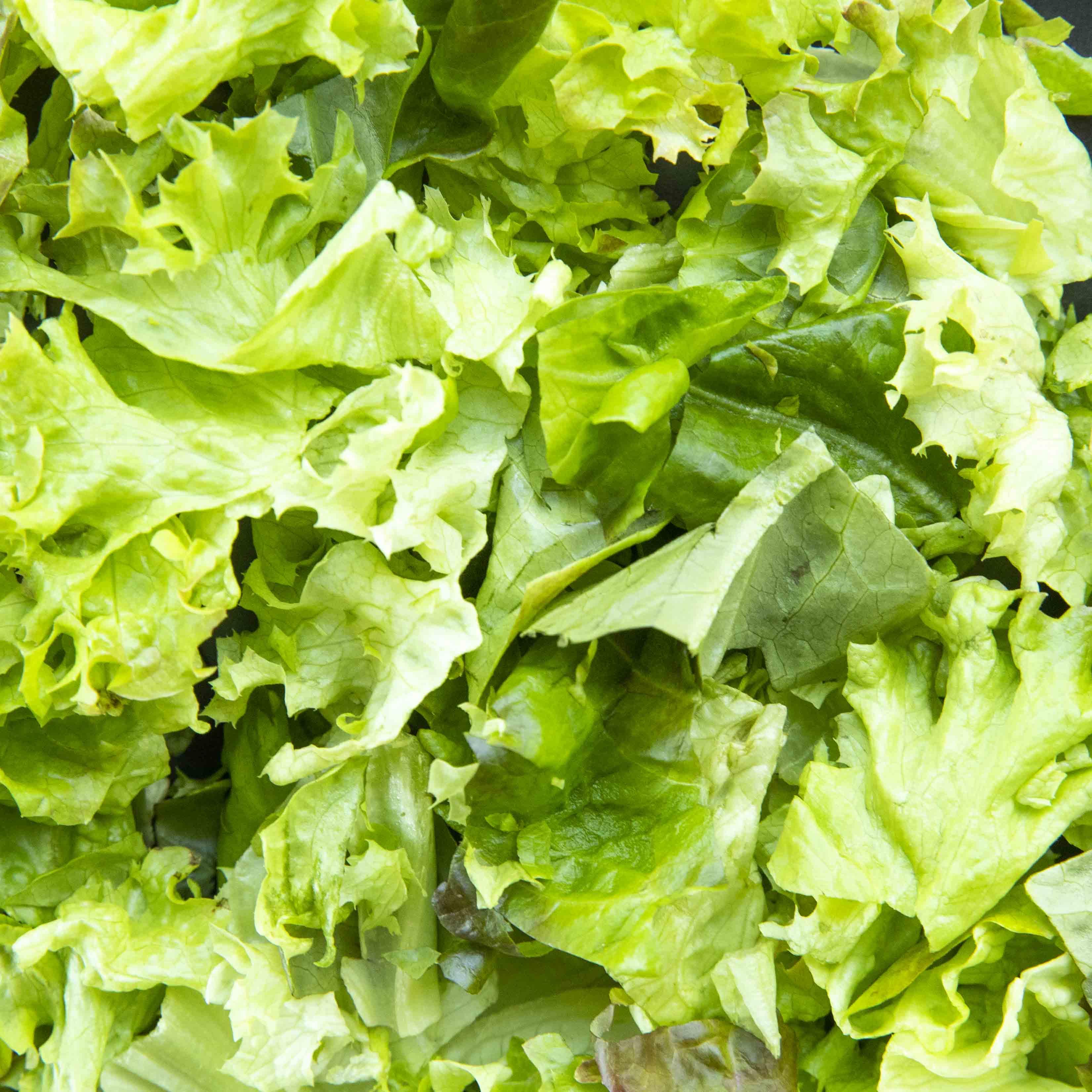 cultivare Signature Lettuce