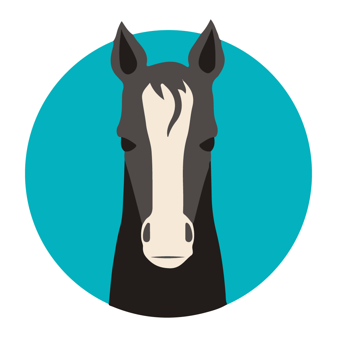 Illustrated horse icon