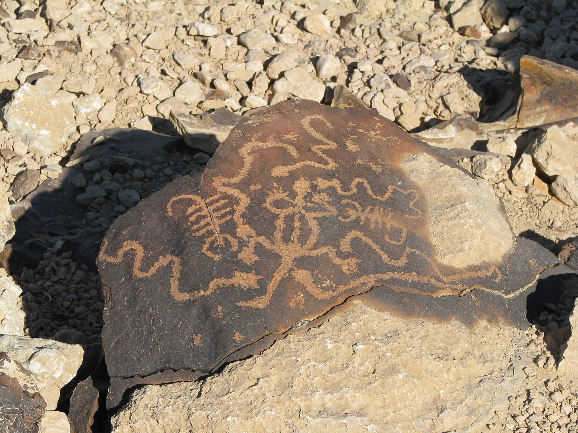 snake rock painting