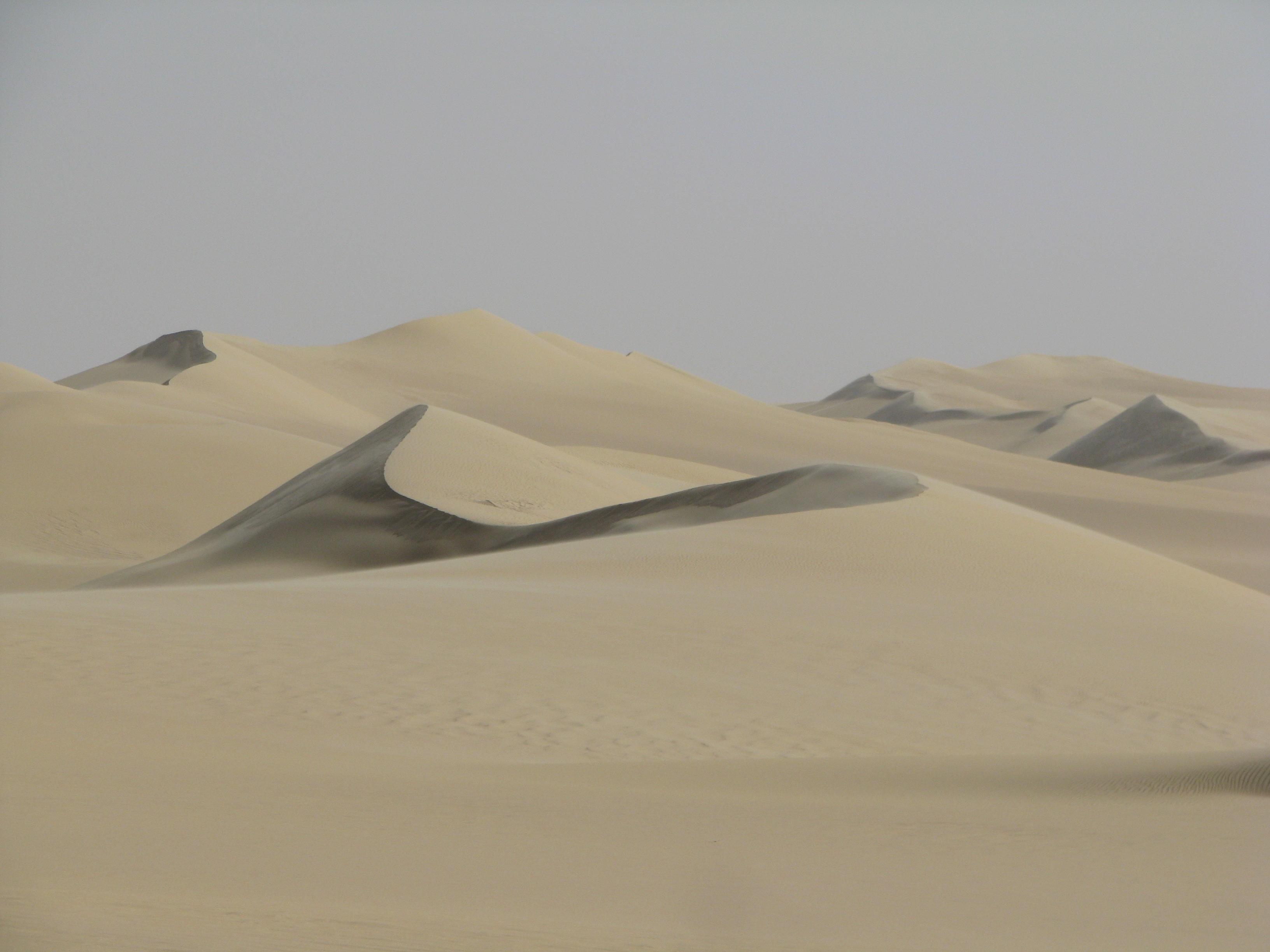 המדבר המערבי - מצרים