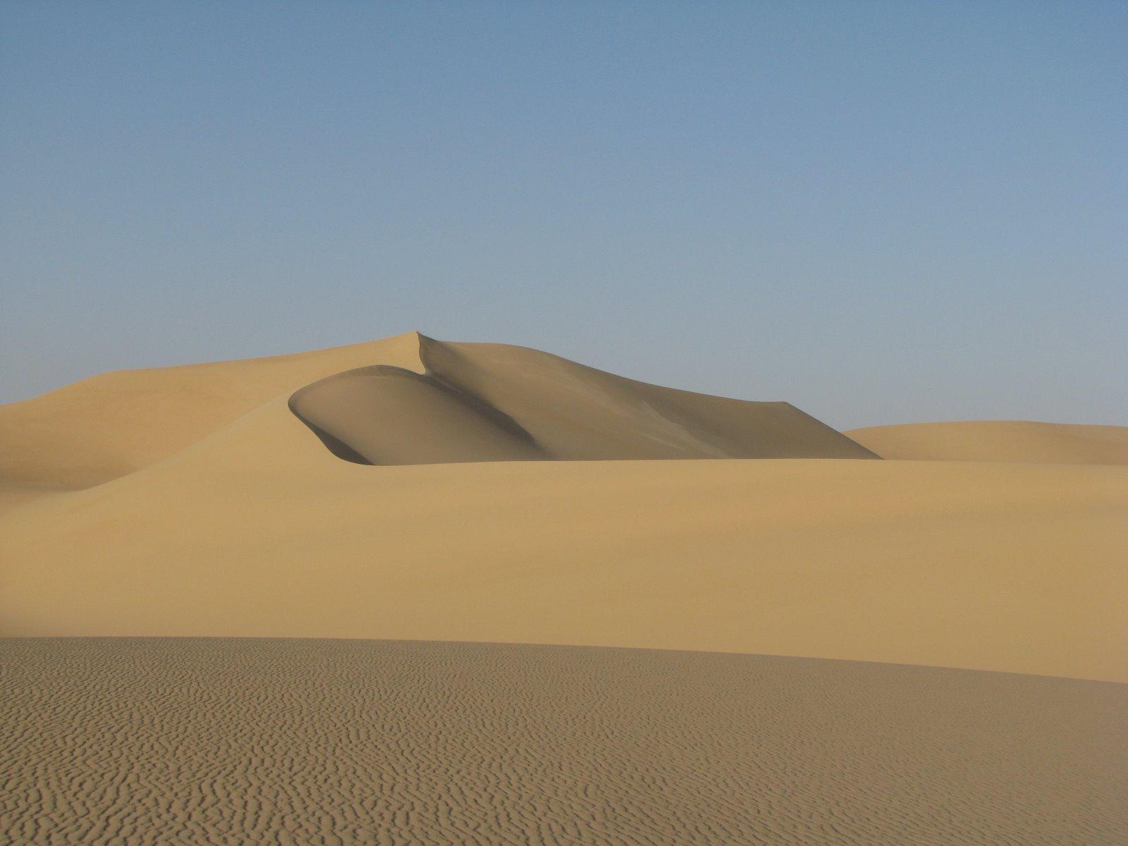 דיונה  - לטייל במדבר המערבי 2