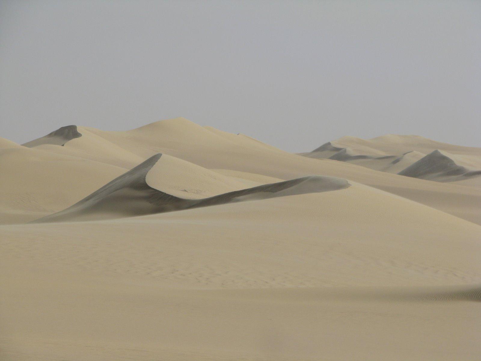 דיונה  - בטיול במדבר המערבי 1
