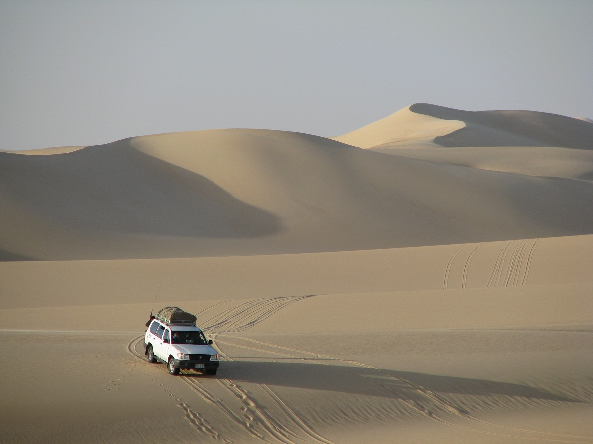 דיונות במדבר המערבי
