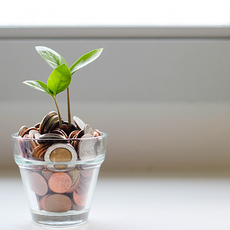 A green sprout emerges from a cup of assorted change while sitting on a desk near a window.