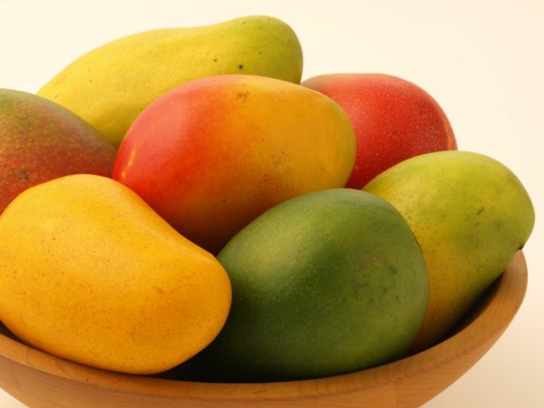 Algunos ejemplares de mango.