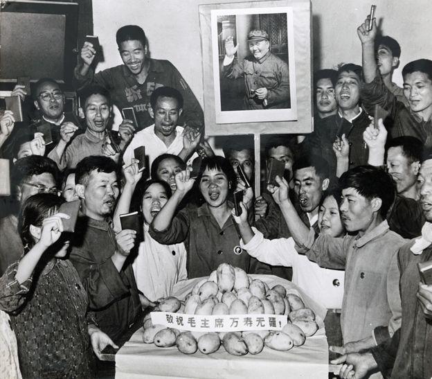Trabajadores en Tsinghua celebran la llegada de los mangos.