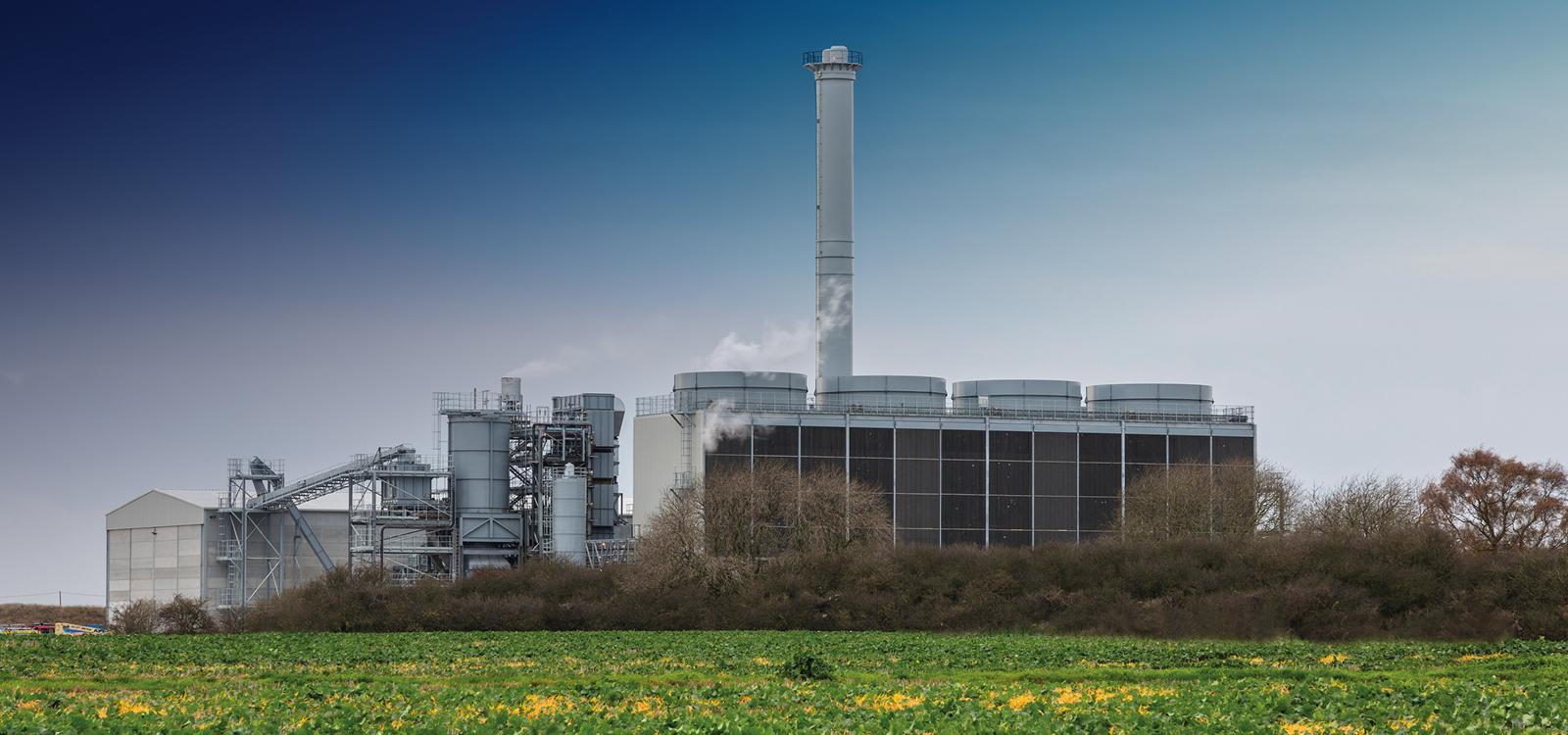 Biomass 21 Tansterne