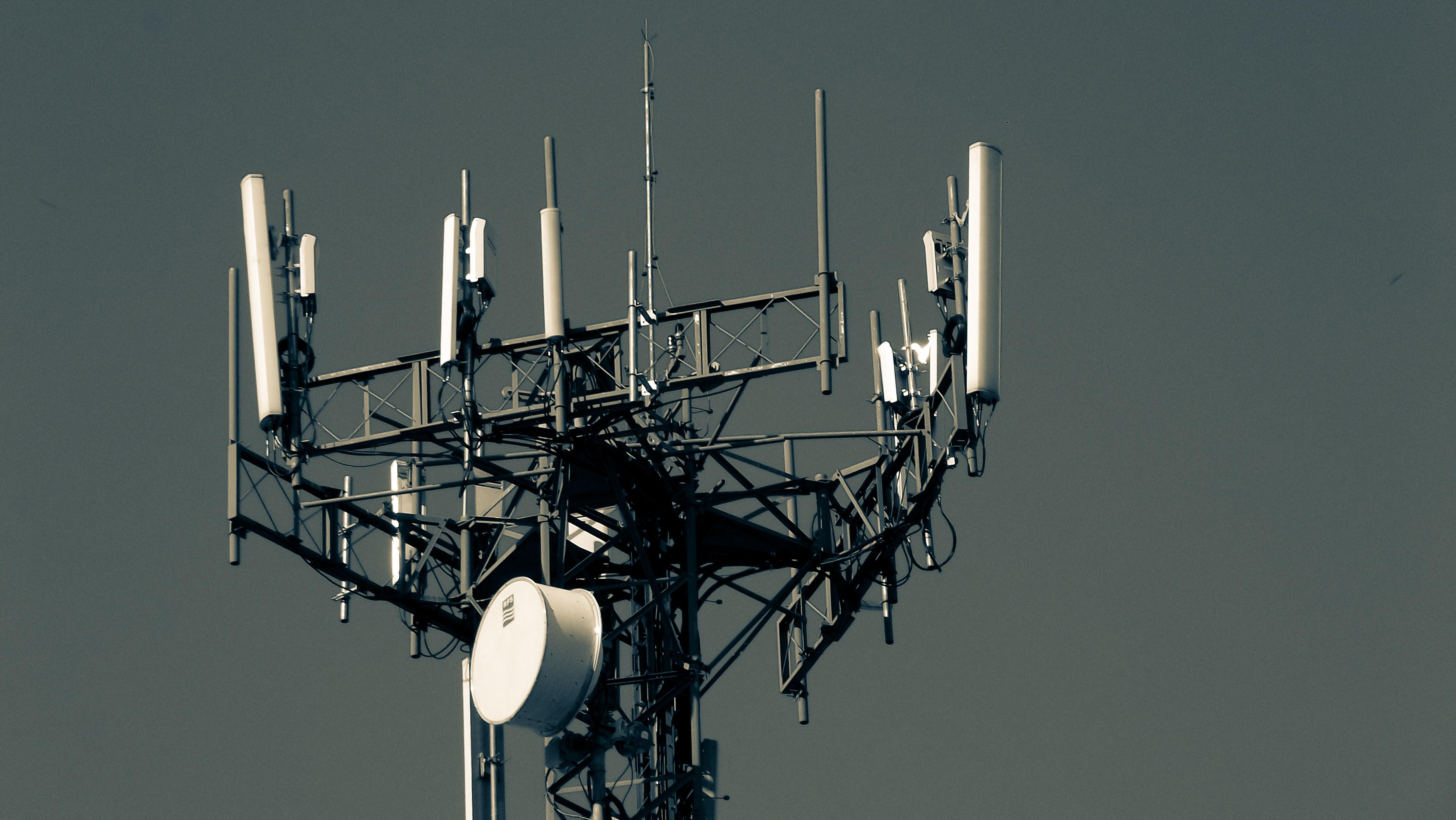 Séparer le bruit du vrai signal
