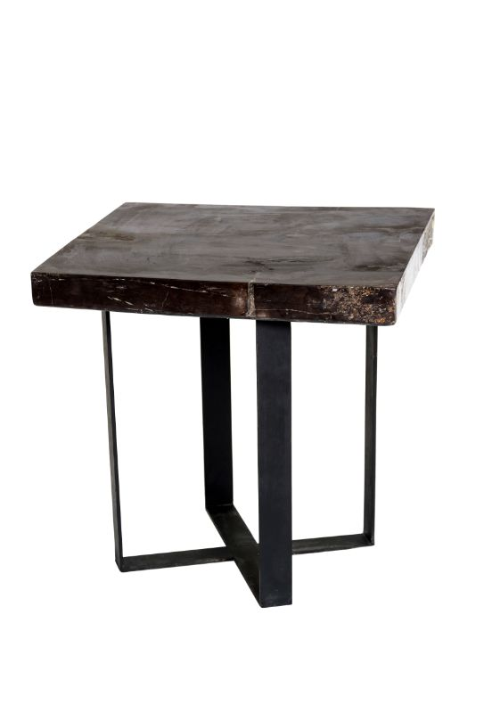 Square fossilized wood side table