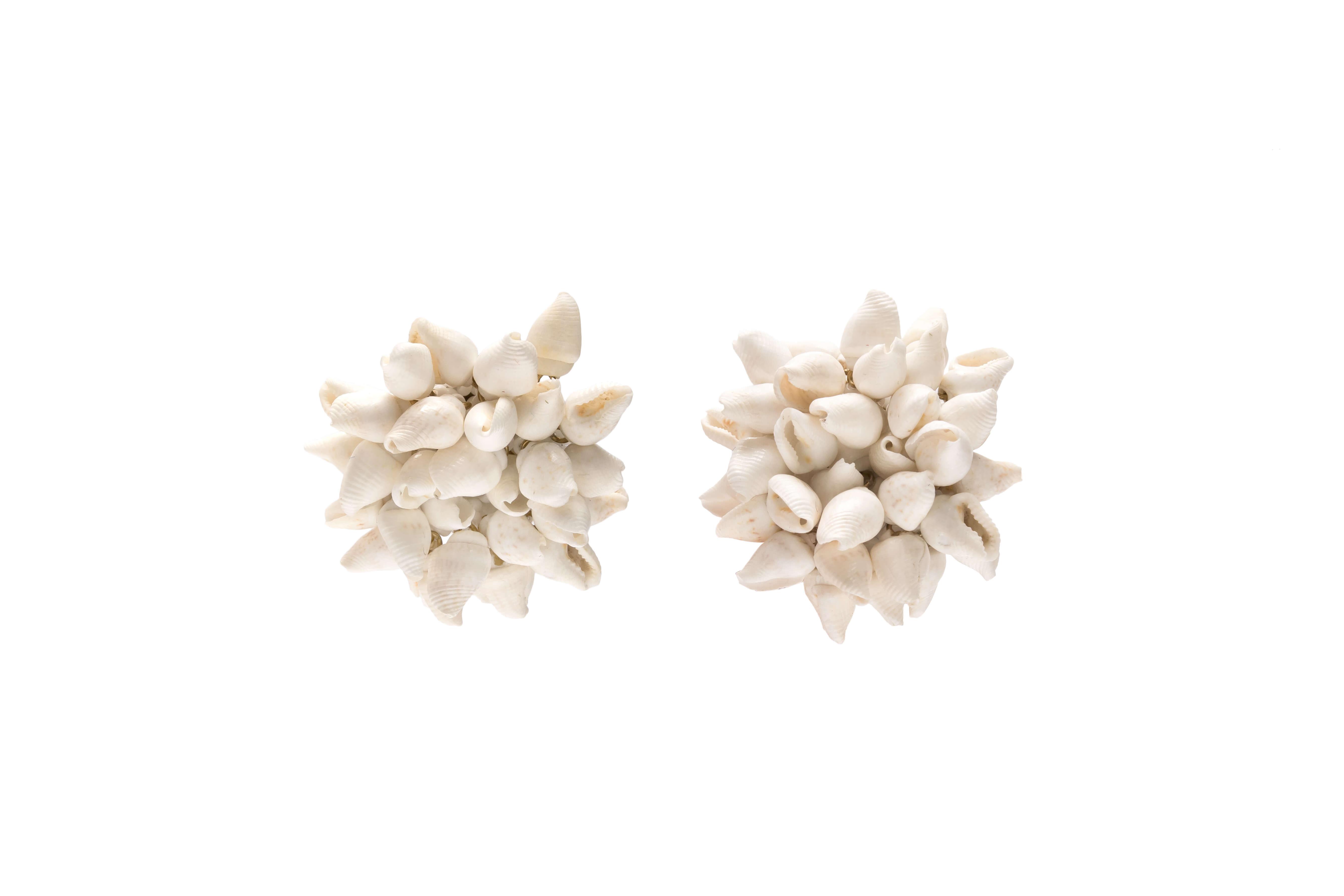 Natural Seashell Earrings